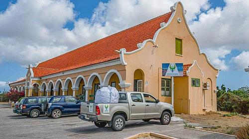 Green Phenix Curacao